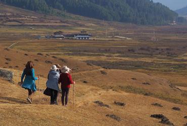 Bhutan Discovery Tours